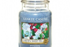 Garden-sweet-pea