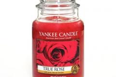 True-Rose