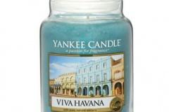 Viva-Havana