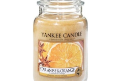 star-anise-orange